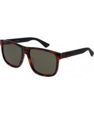 Gucci Mens gg0010s 006 Sonnenbrillen