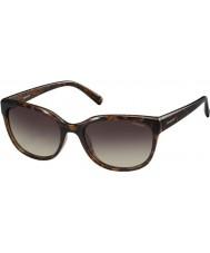 Polaroid Damen pld4030-s q3v la havanna dunkel polarisierte Sonnenbrille