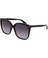 Gucci Damen gg0022s 003 Sonnenbrillen