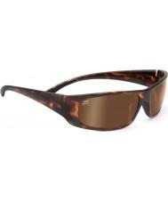 Serengeti Fasano dunkle Schildpatt polarisierte phd Treiber Gold Sonnenbrille