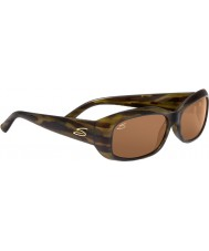 Serengeti Bianca Streifen Schildpatt Fahrer Sonnenbrille