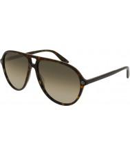 Gucci Herren gg0119s 002 Sonnenbrille