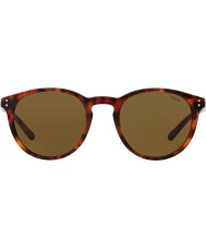 Polo Ralph Lauren Mens ph4110 50 501773 Sonnenbrille