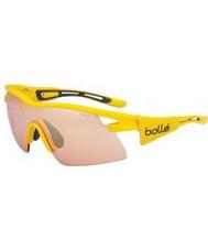 Bolle Vortex gelb TDF Modulator stieg Pistole Sonnenbrille